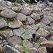 Und diese Basaltsäulen werden hier erfolgreich vermarktet.