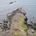 Giant's Causeway von oden.