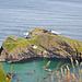 Carrickarade Island mit der Rope Brigde (links).