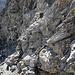 Am Übergang zwischen Schutt und Fels, hier ist die Steilheit besser erkennbar