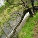 <br />Kein Durchgang. <br /><br />An einigen Stellen ist der 'Ri della Büxa' mit einem Drahtzaun abgesperrt.<br />_______<br />____________<br /><br />(Strange Rivers - Joan Baez)<br />[http://www.youtube.com/watch?v=5GVP7zynfsM]<br />__________________<br /><br />Aber jetzt......➨➜➙☞☛☞⤻⤼⤞⤠➽➼➺➻➸⤼⤻⤼⤻⤼⤻⤼⤻➙➝<br />________<br />__