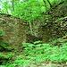 <br />Die Wände der Ruine<br /><br />(vom Innenhof aus gesehen)<br /><br />Die Anlage der Ruine war mir ein Rätsel.<br />Ich habe das nicht so recht geschnallt.<br />_____________<br /><br />(The Bit That I Don't Get - Katie Melua)<br />[http://www.youtube.com/watch?v=Utx8-sZt9iM]<br />___________________<br /><br />Ich bin doch durch die Eingangstür in die Ruine hinein gegangen.<br />Aber jetzt stehe ich VOR der Ruine - vor deren Aussenwänden.<br /><br />Ich bin also DRINNEN und gleichzeitig DRAUSSEN.<br /><br />Wenn ich also drinnen bin, dann bin auch draussen.<br />Und wenn ich draussen bin, dann bin ich trotzdem drinnen,<br />weil ich ja durch die Eingangstür in die Ruine<br />rein gegangen bin.<br /><br />Wenn ich also wieder aus der Ruine hinaus gehen will in den Wald,<br />dann muss ich von AUSSEN durch die Eingangstür nach AUSSEN gehen.<br /><br />Eine Tür, die von AUSSEN nach AUSSEN führt.<br /><br />Das wird noch böse enden :-).<br /><br />➸➻➺➼➽⇛↝⤳↝⤳⤼⤻⥅⥴⤘⤗⤏⟿⇝⟿⇝⟿⤏⤳↝⟶<br />__________________________________