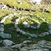 Der Steinkreis besticht durch seine harmonische Form.