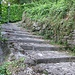 La scalinata che da Cogoredo conduce alla chiesa di Sant'Alessandro