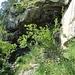 Felsbänder im Erosionstrichter