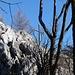 Der Gipfel des Kreuzkogels   [http://www.matthias.hikr.org Home]