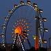 Kiliani, das 55 m hohe Riesenrad - das passt auch wegen der Aussicht von oben