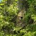 <br />♩♪♫♬♫...Baby Alone In Babylone...♬♫♪♩♪<br /><br /><br /><br />(Jane Birkin)<br />[http://www.youtube.com/watch?v=-kZosXLkvVo]<br />_________<br />______<br />____<br />_<br /><br />Was hast du gesagt, der Songtext passt gar nicht zum Bild...???<br /><br />Doch doch, irgendwie schon...<br /><br />:-) :-)<br />______<br />_