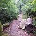 Die Trails beginnen - hier der Pfad hinauf zum Wasserturm.