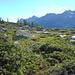 Im Aufstieg zum Pizzo Rotondo 3192m - Das Bedrettotal