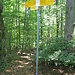 Wegweiser auf dem Lägernsattel, noch ca. 8 Min. bis Burghorn.