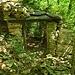 <br />Und da bin ich schon bei der Ruine (540m ü.M.)<br />im Wald unter den Heidenhäusern und suche den Weg.<br /><br />Aber wie das so ist, man wird abgelenkt.<br /><br />Hier ist der Eintritt frei.<br /><br />Also mal sehen, ob es etwas zu sehen gibt.<br />_________________<br /><br />(Into The Mystic - Jen Chapin)<br />[http://www.youtube.com/watch?v=a6FPsRk-HHE]<br />___________<br /><br />➡➨➡➜☞☛☞☛☞➜➡➠➟➞➽➼➺➻➸⤴⤴⤴<br />_____<br />__