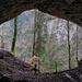 Blick aus der Grotte aux Fées