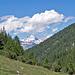 Unterwegs zur Nidristi Alp