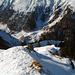 Les chamois sont descendus par là. En bas c'est Val Sampuoir et on peut voir l'Alp Sampuoir