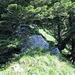 Der NW-Grat ist im unteren Teil leicht bewaldet was etwas Schatten spendet.