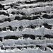 Spuren des Wassers im Karst