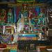 und viele Buddhas