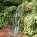 der Wasserfall verfügt über verschiedene Stufen, hier eine niedrigere