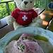 Dem Schweizerbär schmeckt der Wurstsalat nicht so recht, es fehlt der Schweizer Käse darin