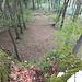 Um auf den Pfingstberg zu kommen, überkletterten wir auch ein paar kleine Felsen. Unter den Felsen war das Gelände sehr abschüssig.