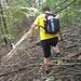knapp 400m nach der Sendeanlage endet der Weg wieder mitten im Hang .. ab durch die Wildnis
