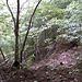 .. und suchten uns eine Passage an der wir ohne Kletterei im Fels auf den Trauf  gelangten ..