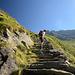 """Lungo le scalinate della """"scorciatoia"""" per il Volta (che passa per l'Alpe Talamucca)"""