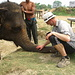ein Elefant und sein Mahout. Ein Mahout bleibt seinem Tier ein Leben lang verbunden und wohnt in unmittelbarer Nähe ihrer Rüsseltiere in kleinen Hütten.