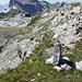 Das wichtige Steinmännchen vor der S-Schlaufe<br />Koordinaten 707 600 / 193 960