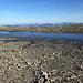 """Schöne Permafrost-Strukturen im Schutt auf dem Giblistock-Plateau (""""Polygon-Böden"""")"""