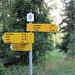 es geht los, wir wählen nicht den Topali-Weisshorn-Höhenweg sondern gehen über Ze Schwidernu