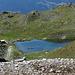 Lac de Bella Tola