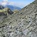 eines der Steinfelder, die im Aufstieg überquert werden müssen