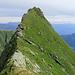 Was für ein Voralpengrat! Kurz vor dem Gipfel, das Kreuz ist etwas unter dem höchsten Punkt und noch nicht sichtbar.