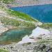 Unglaubliche Farben am Wildsee, selbst bei bedecktem Himmel