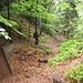 steiler Abstieg nach Jetřichovice