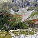 Solo come indicazione: sentiero Passo del Mauro - Alpe d' Orz - Bocchetta Pianca Geneura