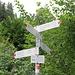 Wegweiser Wurzelweg 1070 m. Schon weiter unten auf ca. 900 m oder beim WW Ledeschrofen 980 m kann man den Forstweg verlassend auf ihn einschwenken, sh. blau eingetragen auf dieser [http://f.hikr.org/files/1214591.jpg Karte]. 400 Hm ab hier bis zum Gipfelkreuz wurden aufgrund des steilen Geländes effizient in ca. 40 Minuten bewältigt.<br /><br />Steigt man von der Talstation direkt auf, kann man gemäß Karteneintrag schon auf etwa 800 m vom Wanderweg auf einen Bergpfad wechseln, der zu der oben beschriebenen Route führt