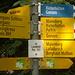 Klare Sache in Lauiwald - herrlicher Aufstieg auf der weiss-blau-weissen Route