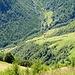 Verstreut liegende Alphütten im Tal des Rio del Basso.