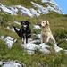 """Zwei """"Lucas"""" unterwegs am Lugauer :-) (Der andere Hund hieß tatsächlich auch Luca)"""