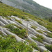 Spannende Karrenfelder