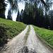 Schöner Weg von Obersays Richtung Stams