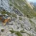 Noch immer kommen Klettersteiggeher den Berg herauf