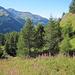 Abstieg nach La Forclaz