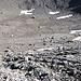 Hier gab es mal den Gletscher Pfandlkees. Jetzt ist davon nichts mehr zu sehen, allenfalls gibt es noch Toteisreste unter den Geröllmassen. Der Weg ist übrigens bis in die Untere Pfandlscharte sehr gut markiert.