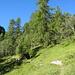 Im Aufstieg zwischen Vernec (1858 m) und Vouasson (2090 m)