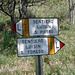 """Sentiero """"Luisin"""" direzione S. Pietro, verso la Valle dell'Oro"""