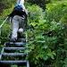die Treppen auf dem Geissrüggen